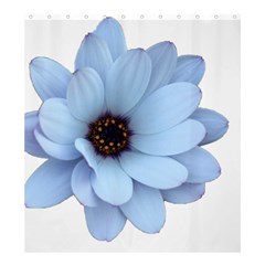 Daisy Flower Floral Plant Summer Shower Curtain 66  X 72  (large)