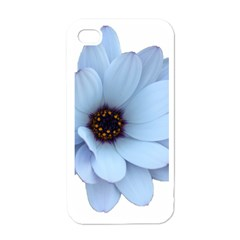 Daisy Flower Floral Plant Summer Apple Iphone 4 Case (white)
