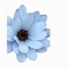 Daisy Flower Floral Plant Summer Large Garden Flag (two Sides)