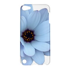 Daisy Flower Floral Plant Summer Apple Ipod Touch 5 Hardshell Case