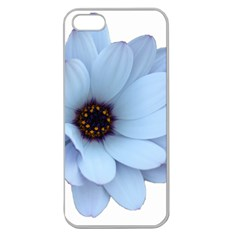 Daisy Flower Floral Plant Summer Apple Seamless Iphone 5 Case (clear)