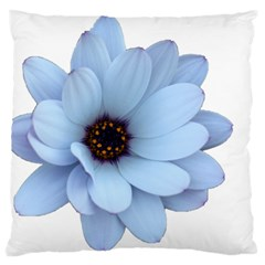 Daisy Flower Floral Plant Summer Standard Flano Cushion Case (two Sides)