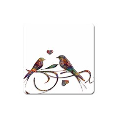 Birds Abstract Exotic Colorful Square Magnet
