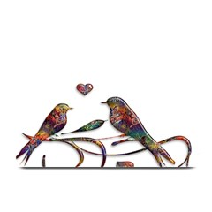 Birds Abstract Exotic Colorful Plate Mats