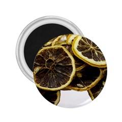 Lemon Dried Fruit Orange Isolated 2 25  Magnets