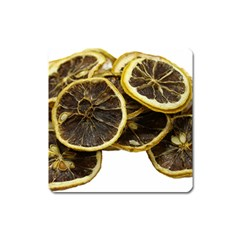 Lemon Dried Fruit Orange Isolated Square Magnet
