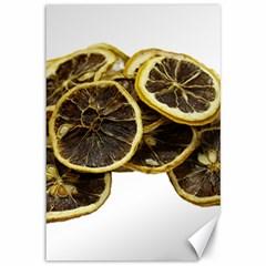 Lemon Dried Fruit Orange Isolated Canvas 12  x 18