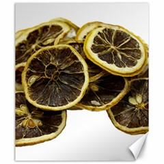 Lemon Dried Fruit Orange Isolated Canvas 20  X 24