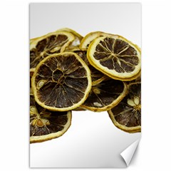 Lemon Dried Fruit Orange Isolated Canvas 20  X 30