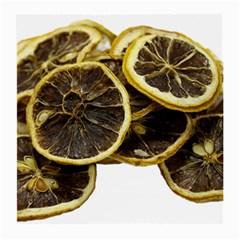 Lemon Dried Fruit Orange Isolated Medium Glasses Cloth (2-Side)