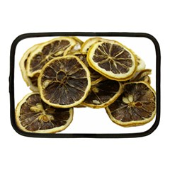 Lemon Dried Fruit Orange Isolated Netbook Case (Medium)