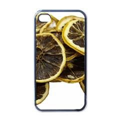 Lemon Dried Fruit Orange Isolated Apple iPhone 4 Case (Black)