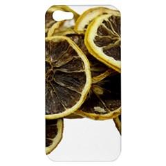 Lemon Dried Fruit Orange Isolated Apple Iphone 5 Hardshell Case