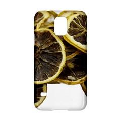 Lemon Dried Fruit Orange Isolated Samsung Galaxy S5 Hardshell Case