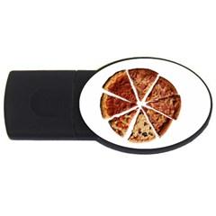 Food Fast Pizza Fast Food Usb Flash Drive Oval (2 Gb)