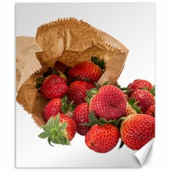 Strawberries Fruit Food Delicious Canvas 20  X 24