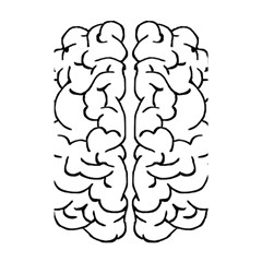 Brain Mind Gray Matter Thought Shower Curtain 48  X 72  (small)