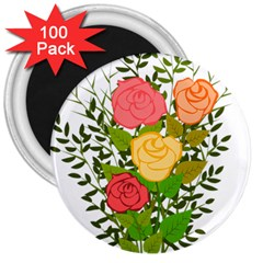 Roses Flowers Floral Flowery 3  Magnets (100 Pack)