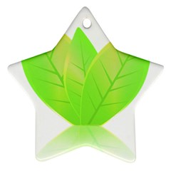 Leaves Green Nature Reflection Ornament (Star)