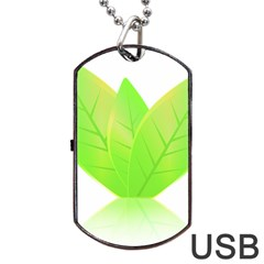 Leaves Green Nature Reflection Dog Tag Usb Flash (one Side)