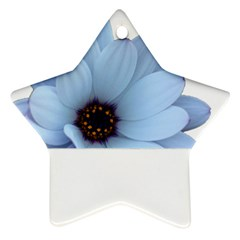 Daisy Flower Floral Plant Summer Ornament (star)