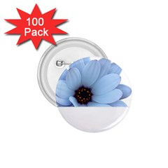 Daisy Flower Floral Plant Summer 1.75  Buttons (100 pack)