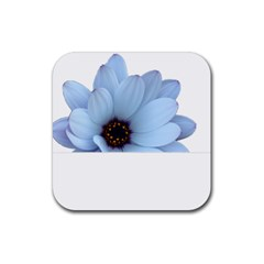 Daisy Flower Floral Plant Summer Rubber Square Coaster (4 Pack)