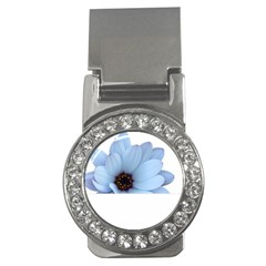 Daisy Flower Floral Plant Summer Money Clips (cz)