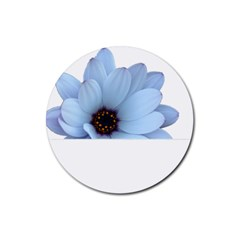 Daisy Flower Floral Plant Summer Rubber Round Coaster (4 Pack)