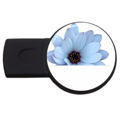 Daisy Flower Floral Plant Summer Usb Flash Drive Round (4 Gb)
