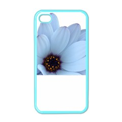 Daisy Flower Floral Plant Summer Apple Iphone 4 Case (color)