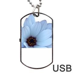 Daisy Flower Floral Plant Summer Dog Tag USB Flash (One Side)