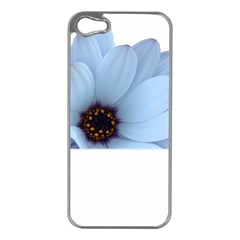 Daisy Flower Floral Plant Summer Apple Iphone 5 Case (silver)