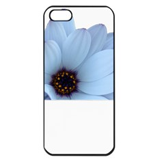 Daisy Flower Floral Plant Summer Apple iPhone 5 Seamless Case (Black)