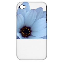 Daisy Flower Floral Plant Summer Apple Iphone 4/4s Hardshell Case (pc+silicone)