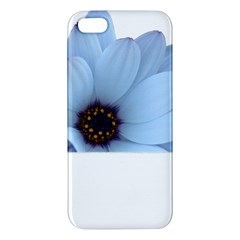 Daisy Flower Floral Plant Summer Apple Iphone 5 Premium Hardshell Case