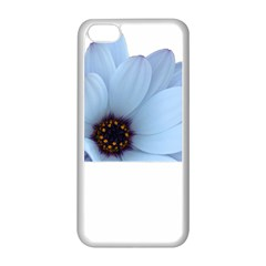 Daisy Flower Floral Plant Summer Apple Iphone 5c Seamless Case (white)