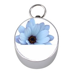 Daisy Flower Floral Plant Summer Mini Silver Compasses