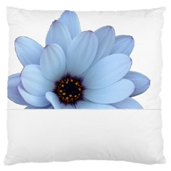 Daisy Flower Floral Plant Summer Large Flano Cushion Case (two Sides)