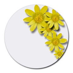 Flowers Spring Yellow Spring Onion Round Mousepads