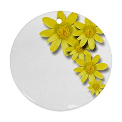 Flowers Spring Yellow Spring Onion Ornament (round)