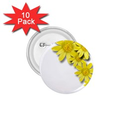 Flowers Spring Yellow Spring Onion 1.75  Buttons (10 pack)