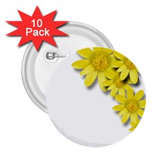Flowers Spring Yellow Spring Onion 2 25  Buttons (10 Pack)