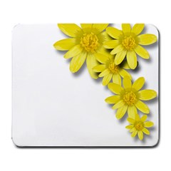 Flowers Spring Yellow Spring Onion Large Mousepads