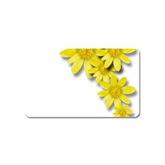 Flowers Spring Yellow Spring Onion Magnet (name Card)