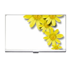 Flowers Spring Yellow Spring Onion Business Card Holders