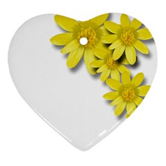 Flowers Spring Yellow Spring Onion Heart Ornament (Two Sides)