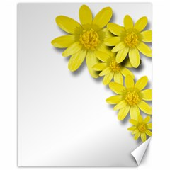 Flowers Spring Yellow Spring Onion Canvas 16  X 20