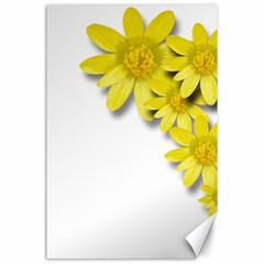 Flowers Spring Yellow Spring Onion Canvas 24  X 36