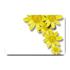 Flowers Spring Yellow Spring Onion Small Doormat